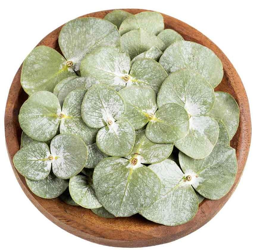 euca-leafs